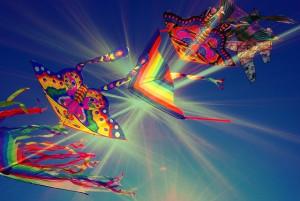 Festival-Drachen